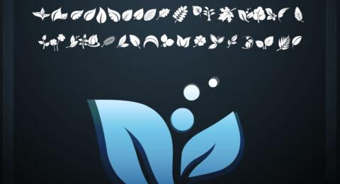 fotograami0-leaves03